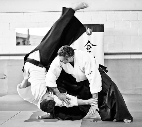 aikido_1.png