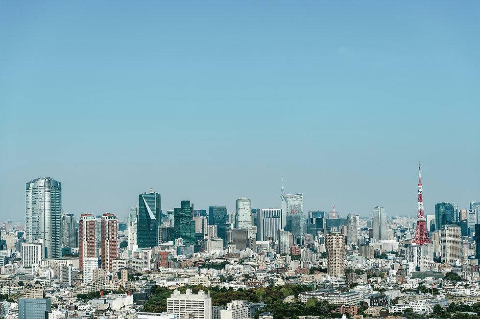 View of Tokyo from Ebisu, Shibuya-ku, Tokyo.jpg