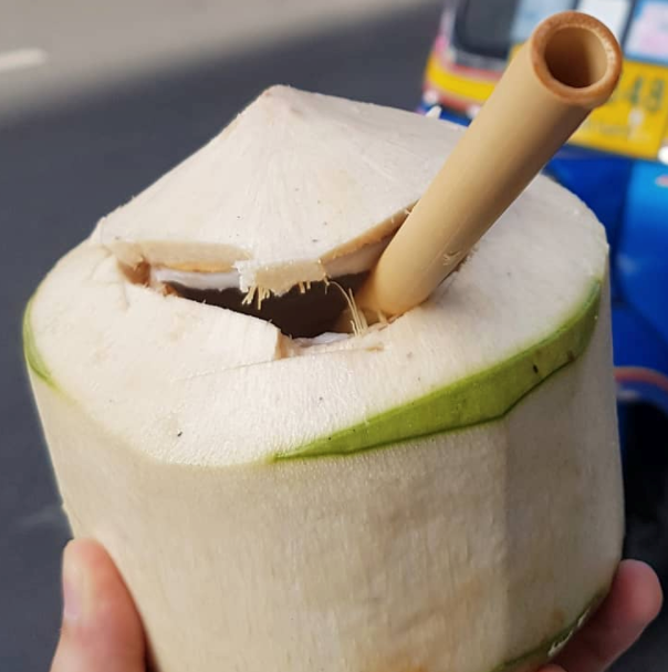 Coconut Vegan Yoga