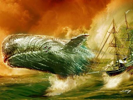 Moby Dick : le véritable naufrage à l'origine de la légende