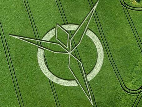 La vérité sur les Crop circles ?