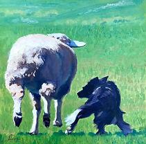 dena sheep.jpg
