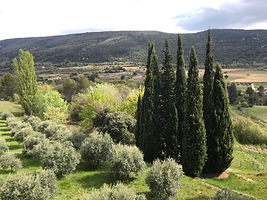 2019 Luberon by Abbey Hilaire.jpg