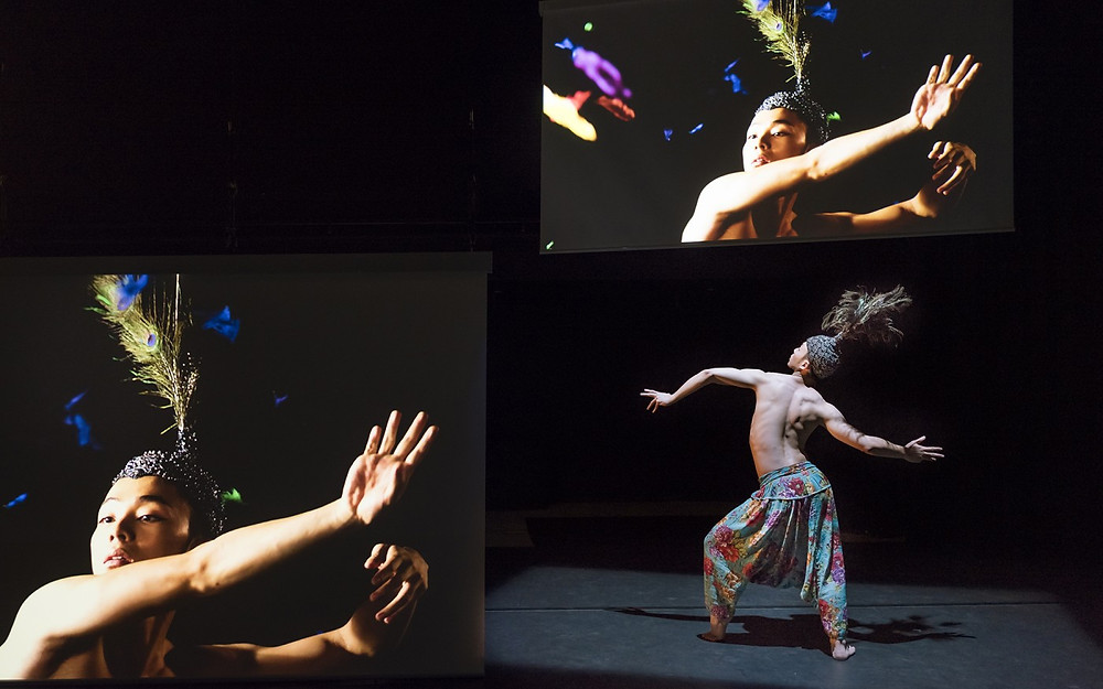 李偉能「觀・影 ── 香港舞者」現場演出。圖片屬西九文化區擁有