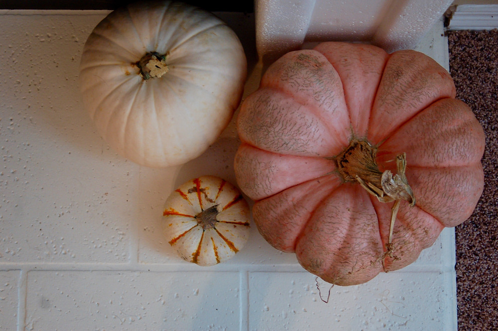#timeforfallyall Four Fall Home Decor Favorites - pumpkins - fireplace decor