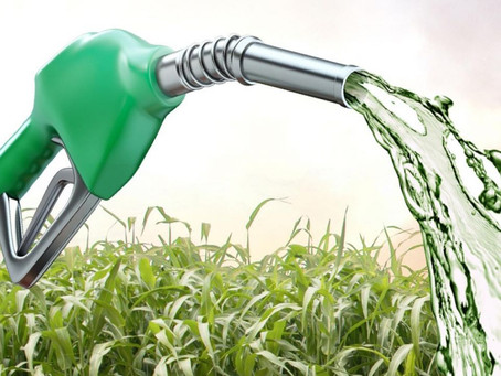 ETHANOL: LESSONS FROM BRAZIL