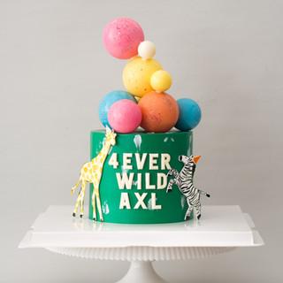 4 Ever Wild Birthday Cake.jpg