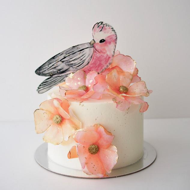 Pink Galah Buttercream Cake