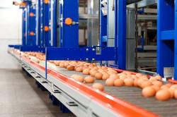 Полная автоматизация производства