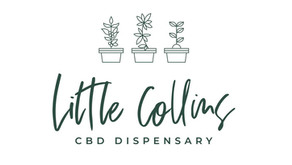 Persecutions of Little Collins CBD Dispensary continues