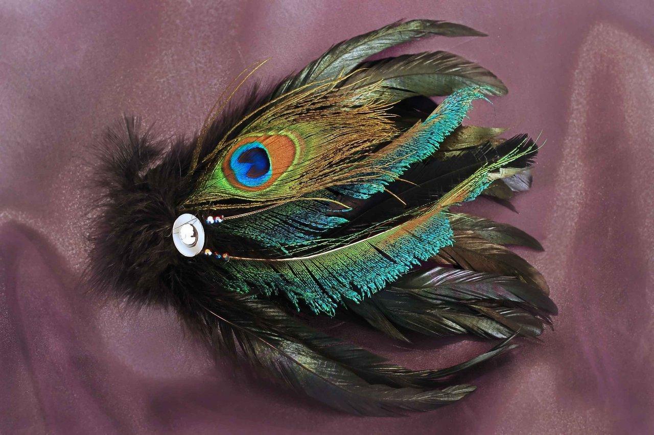 $40 Peacock Fascinator 1.jpg
