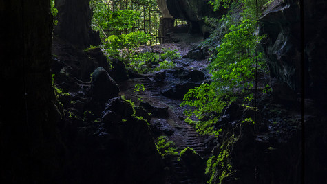 Niah Caves   Borneo