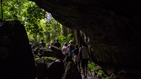 Mulu National Park   Borneo