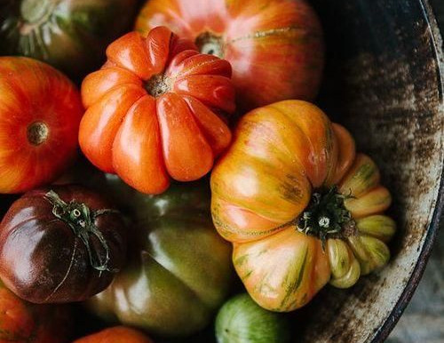90% of tomatoes thrown away because of their appearance
