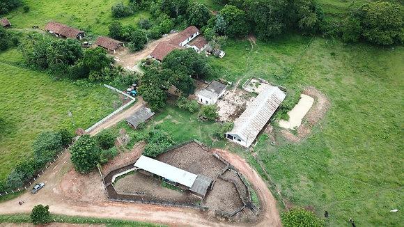 Fazenda em Leopoldina - MG