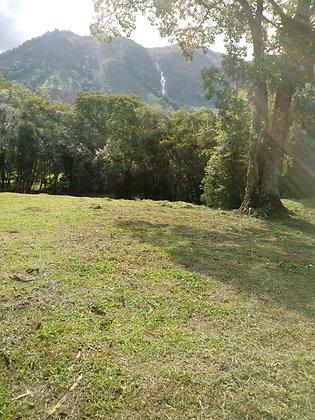 Sítio em Bocaina de Minas - MG