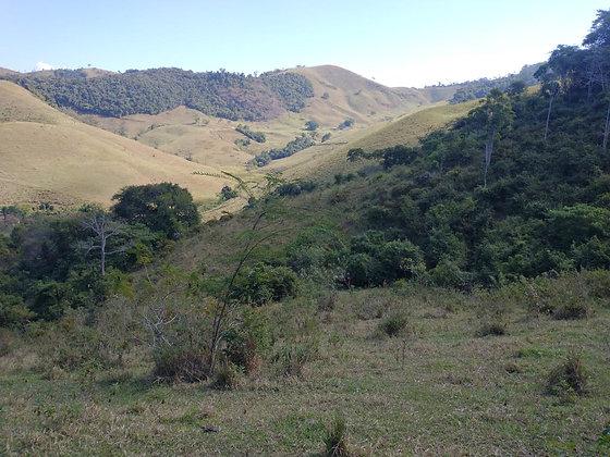 Sítio em Rio Preto - MG