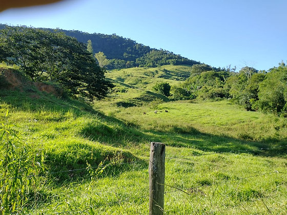 Fazenda em Rio Preto - MG
