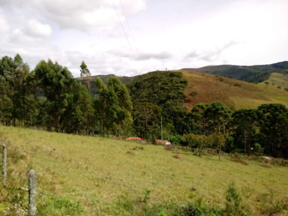 Fazenda em Bocaina de Minas  - MG