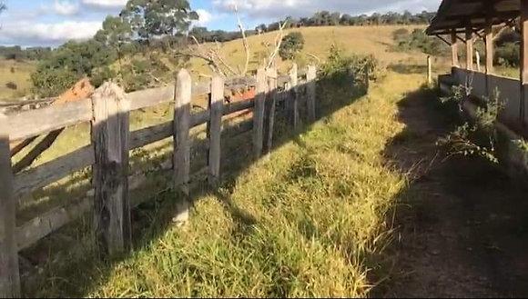 Fazenda em Cruzília - MG