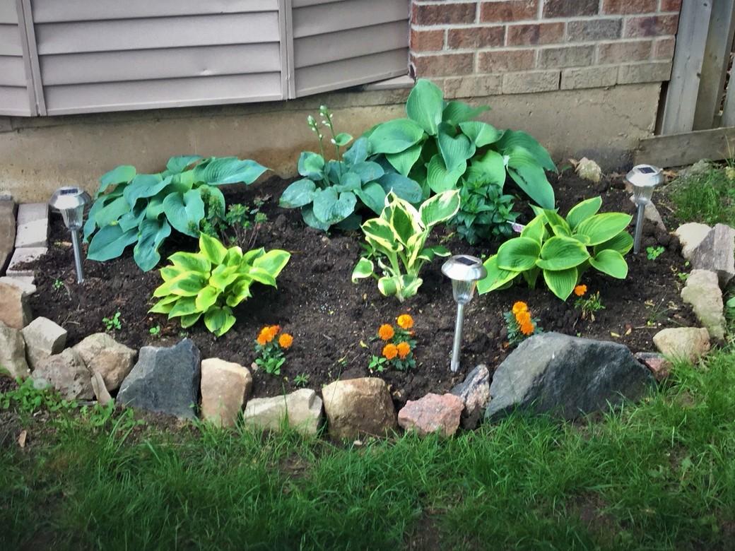 0603DR garden