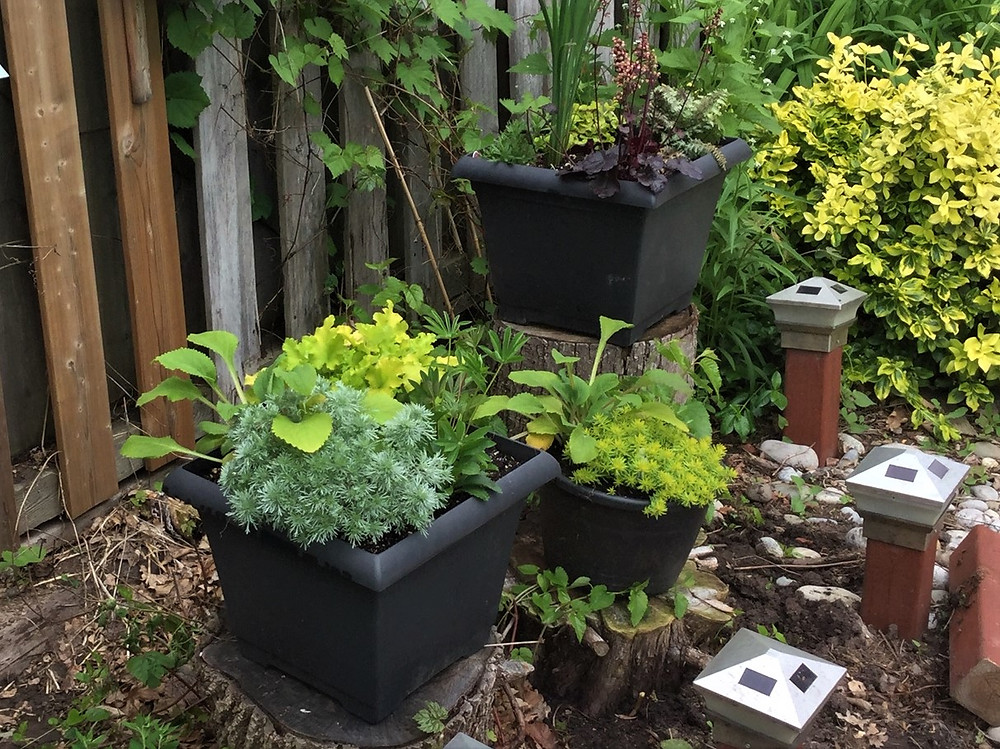 Pots behind Pool