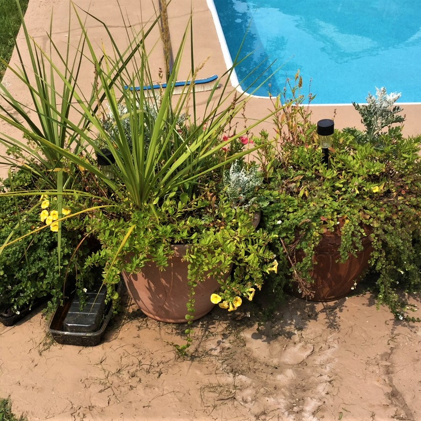 pool pots