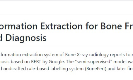 BoneBert: Automated Information Extraction for Bone Fractures Detection