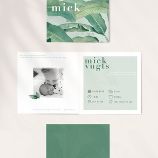 Geboortekaartje Mick.jpg