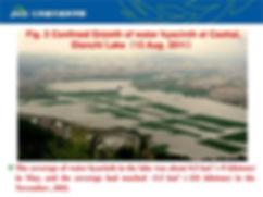 PASOP Lake Caohai aerial 2.jpg