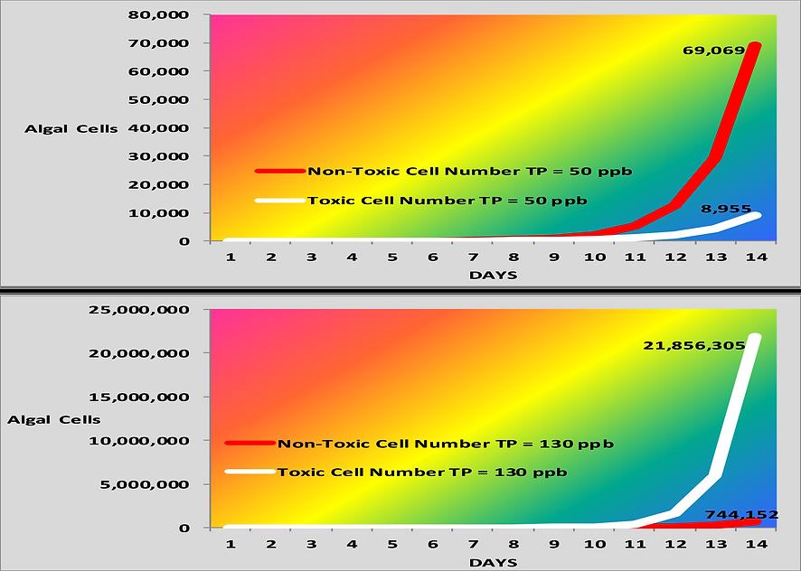 PASOP Growth Curves.png