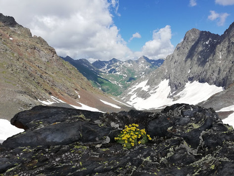 Забег на гору Псеашха Южная (Страшная)