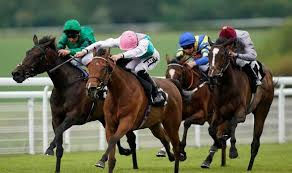 horse racing coach hire.jpg