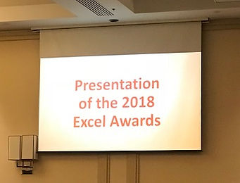 2018_Excel Awards.jpg