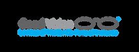 Logo_GoodVision_Peru_2020.png