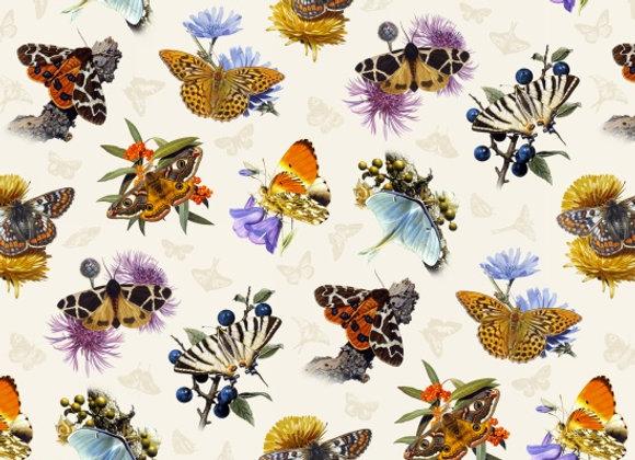 Butterflies by Elizabeth Studio