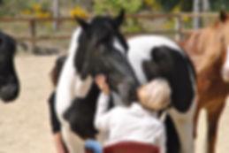 les_chevaux_au_son_des_accords_Toltèques
