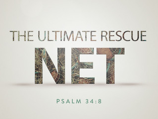 The Ultimate Rescue Net
