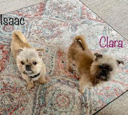 Clara and Issac 3