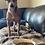 Thumbnail: Feed A Rescue Dog