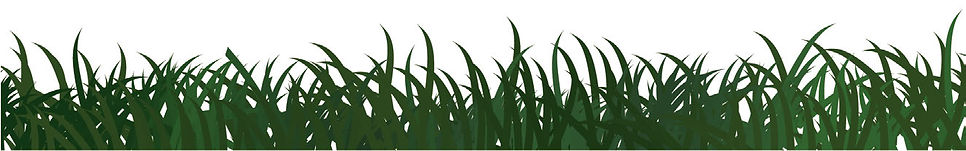 Grass Symbol Tools Adobe Illustrator