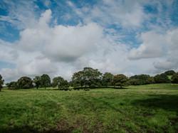 Views across the farm