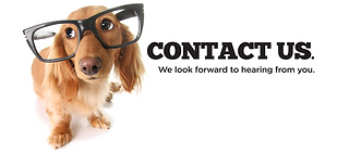 Be smart & contact us at Watchdog Doggy Day-Care today