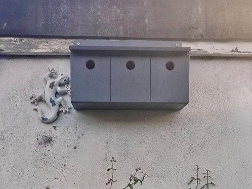 Sparrow Terrace Box