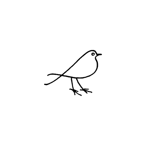 Bird on white.png