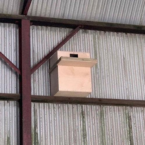 Interior Barn Owl Box