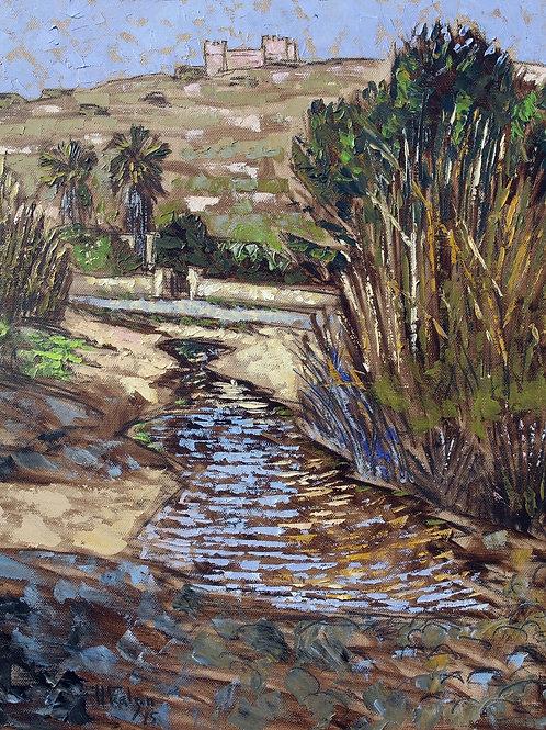 The ripple pond