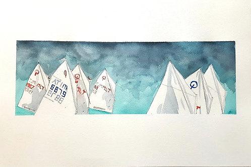 Opti Sails