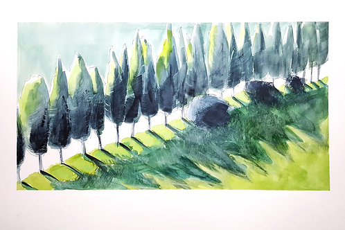 The Green Avenue