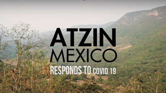 Atzin Mexico Responds to Covid 19.png